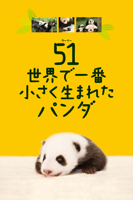 塩浜雅之 - 51(ウーイー) 世界で一番小さく生まれたパンダ artwork