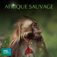 Télécharger Africa, Afrique Sauvage Episode 5