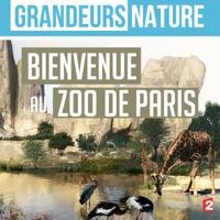 Télécharger Grandeurs nature : Bienvenue au zoo de Paris Episode 1