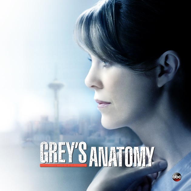 Greys Anatomy Season 11 On Itunes
