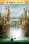 The Lord of the Rings: The Fellowship of the Ring  wiki, synopsis