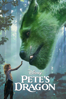 David Lowery - Pete's Dragon (2016)  artwork