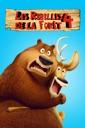 Affiche du film Les Rebelles De La Forêt 4