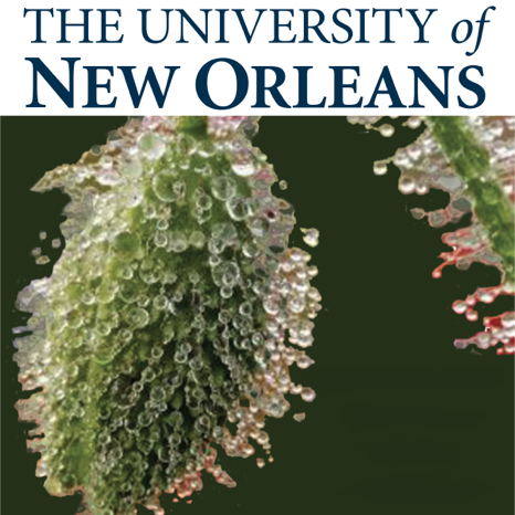 Organic Chemistry 2 - Free Course by University of New Orleans on iTunes U